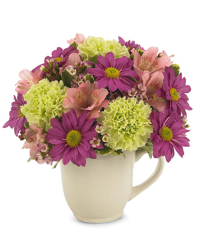Purple daisies and green poms delivered in reusable mug