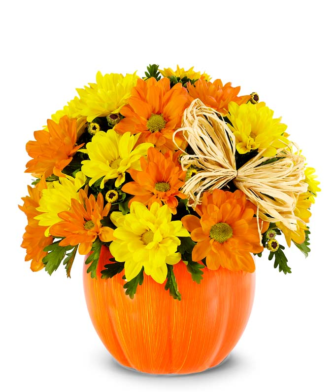 Yellow and orange daisies in pumpkin container
